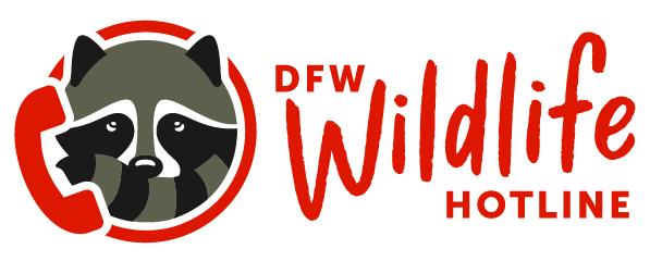 DFW Wildlife Organization